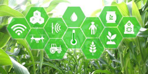 Competição entre startups do agro reúne grandes players do mercado